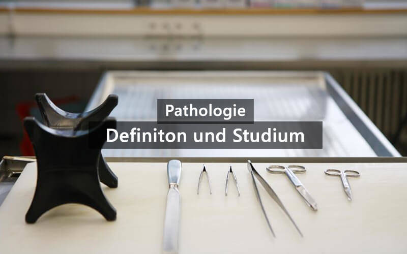 Pathologie Definition Ausbildung Studium