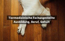 Tiermedizinische Fachangestellte/r (TMFA)
