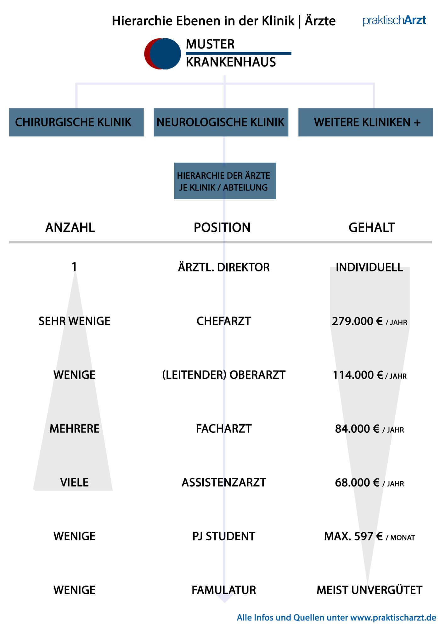 Klinik Hierarchie der Arzt Positionen - Vom Famulus zum Chefarzt
