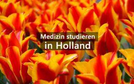 Medizinstudium Niederlande