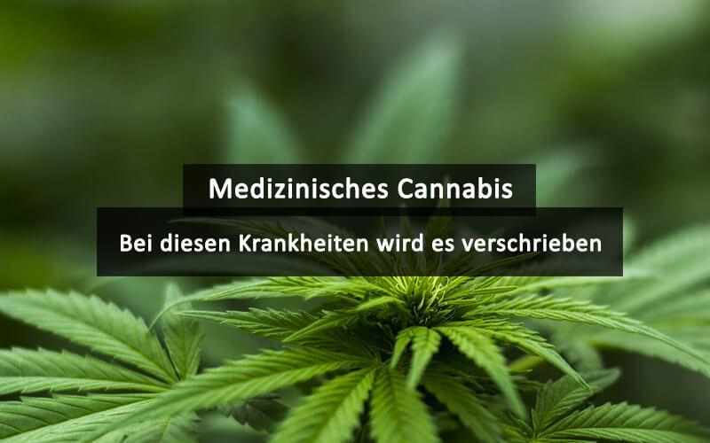 Cannabis Bei Diesen Krankheiten