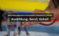 Veterinärmedizinisch-Technische/r Assistent/in (VTMA)