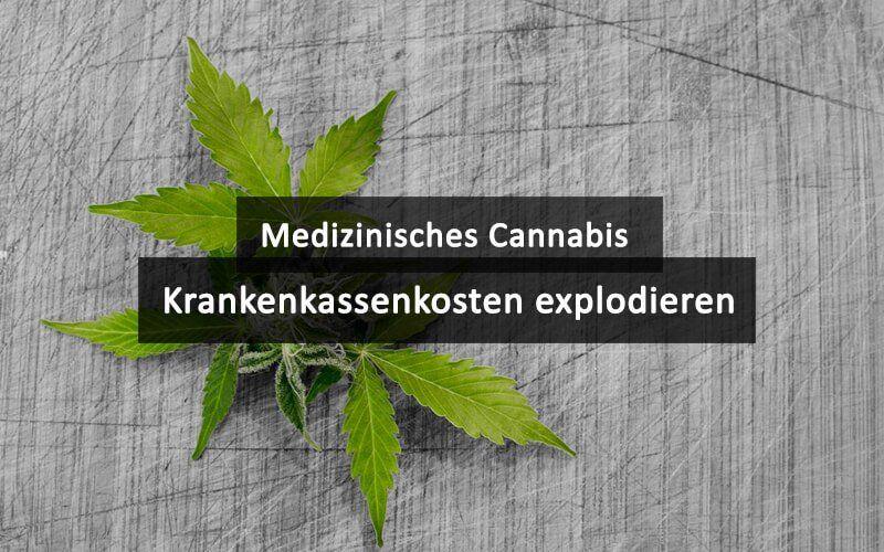 20 Medizinisches Cannabis Krankenkassen