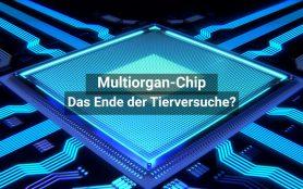 Multi Organ Chip