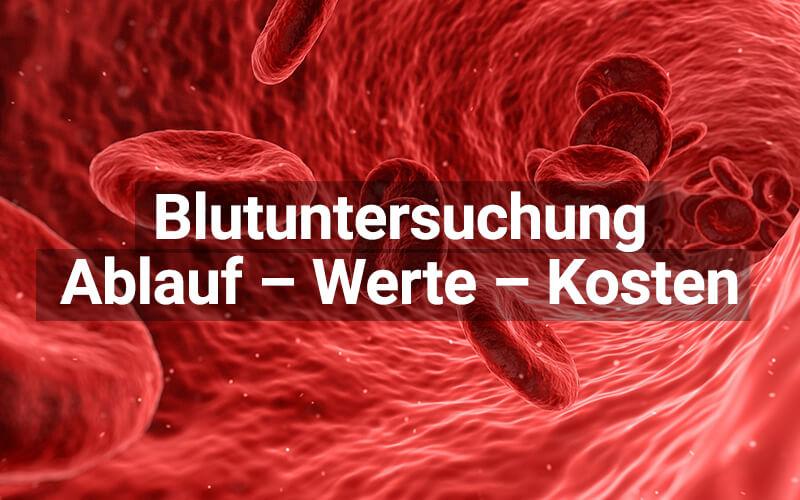 Blutuntersuchung
