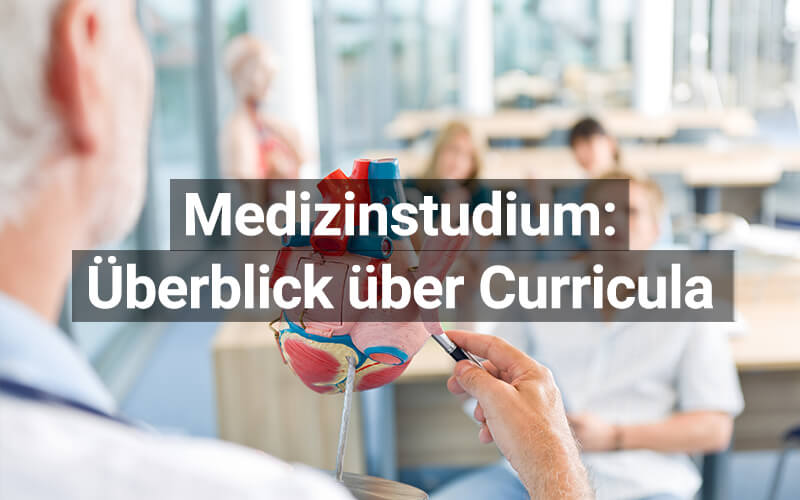 Medizinstudium: Curricula