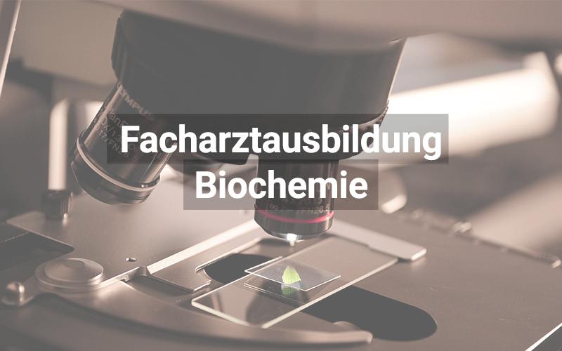 Facharztausbildung Weiterbildung Biochemie