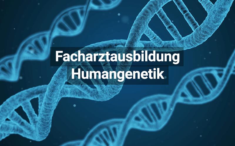 Facharztausbildung Humangenetik