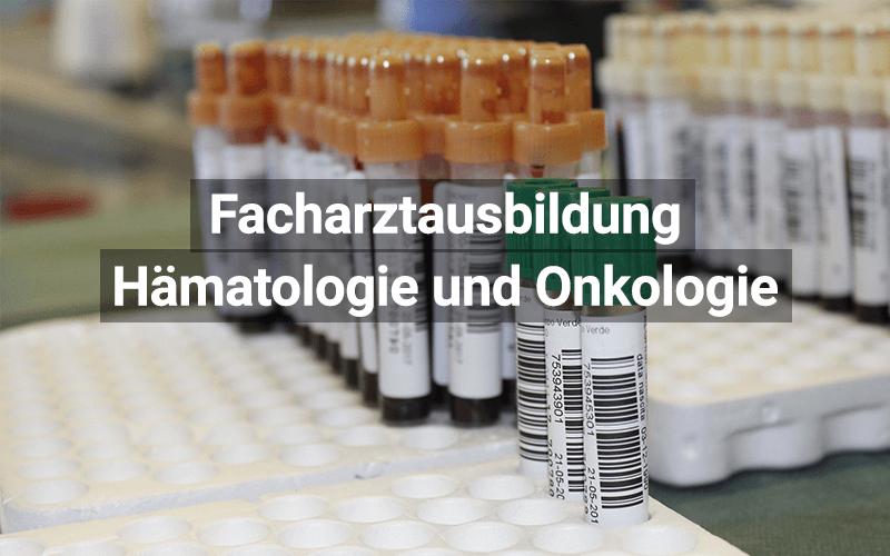Facharztausbildung Innere Medizin Und Hämatologie Und Onkologie