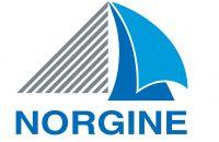 Logo Norgine Print