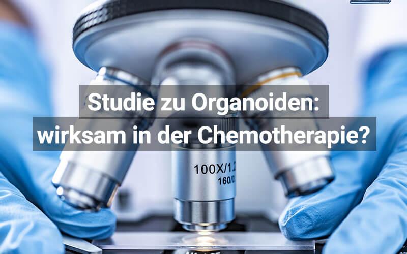 Organoide Chemotherapie