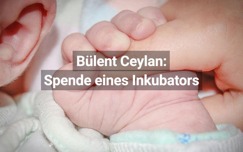 Spende Inkubator