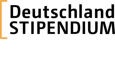 Dstip Logo