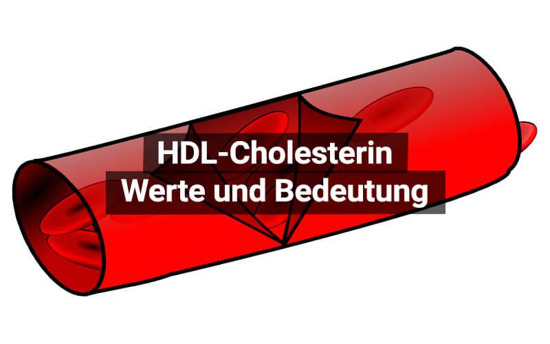 HDL Cholesterin