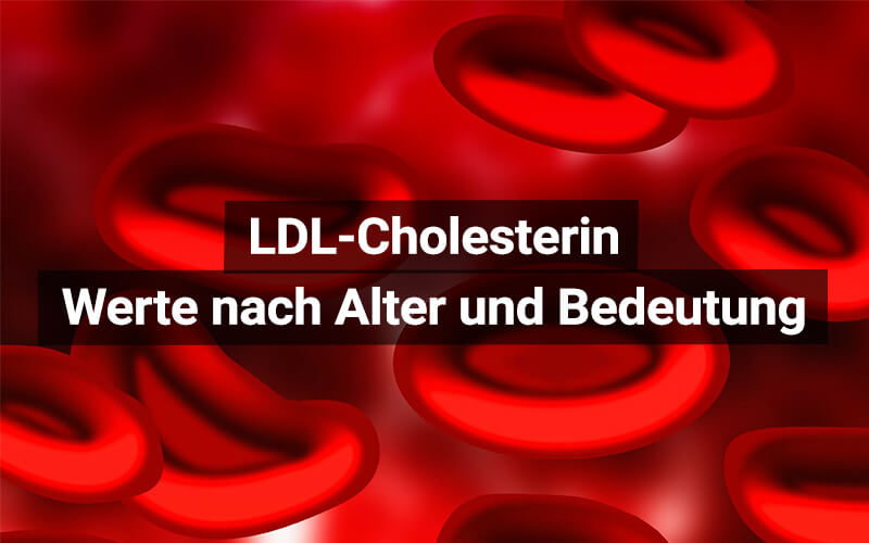 LDL Cholesterin