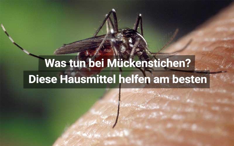 Hausmittel Gegen Mückenstiche