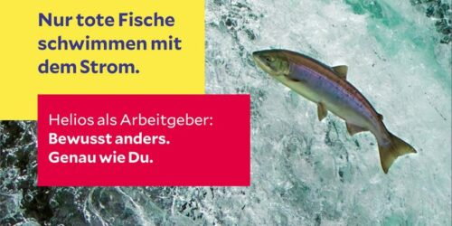 Csm Web Vorlage Fisch 91eb22f0e1