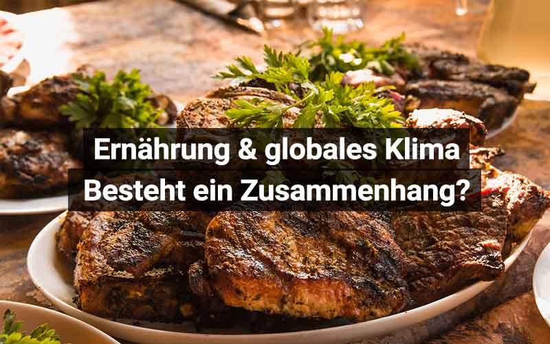Ernährung Und Globales Klima