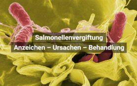 Salmonellenvergiftung