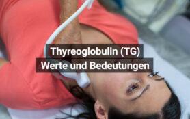 Thyreoglobulin TG